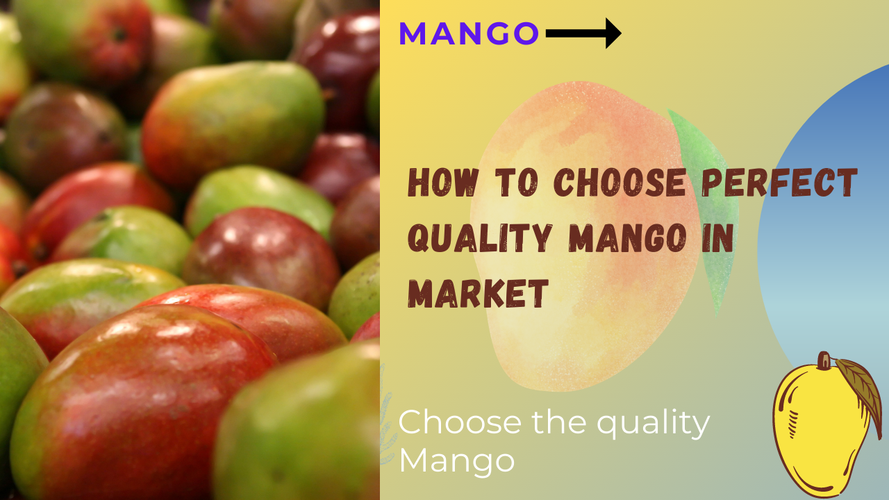 How to Choose Perfect Quality Mango In Market